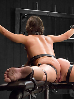 New BDSM Pics